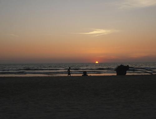 Fotos: Goa
